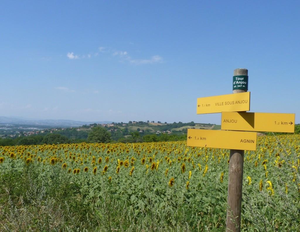 vue sur le village de la tour d'Anjou